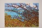 340-les-arbustes-rouges